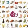 Wine Aroma Illustrations 45-88